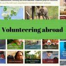 Как работать волонтером за границей