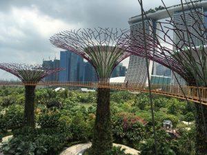 Hanna_Naidenko_Singapur_05